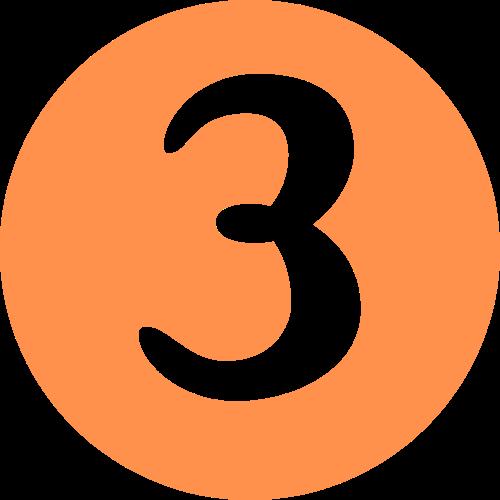 Number 3 Orange Icon